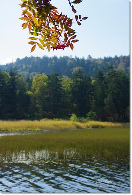 秋の尾瀬沼へ・・・_f0179404_21451983.jpg