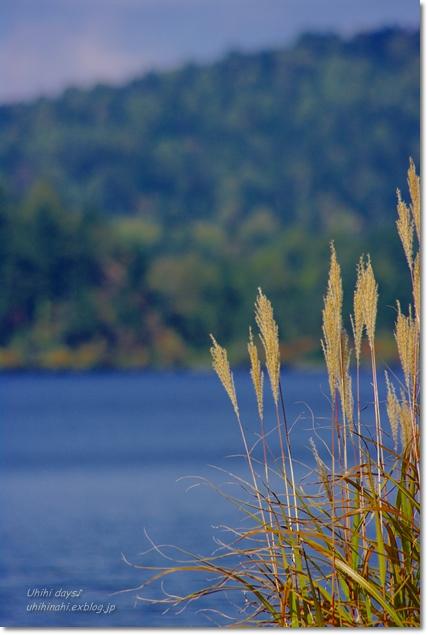 秋の尾瀬沼へ・・・_f0179404_2146325.jpg