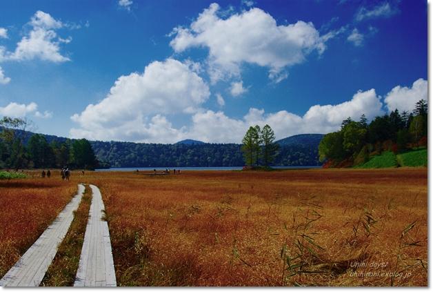 秋の尾瀬沼へ・・・_f0179404_21472360.jpg