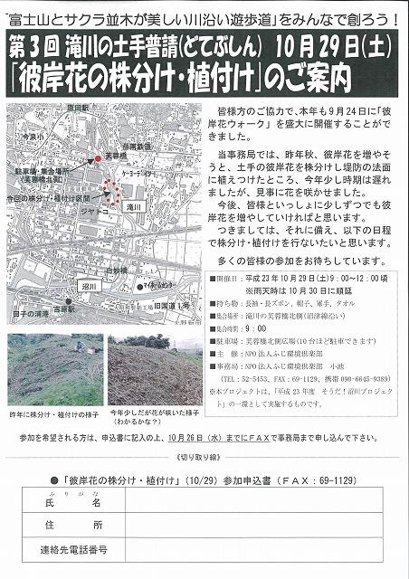 10月29日(土)に滝川で彼岸花の株分け・植付けを!_f0141310_6393789.jpg