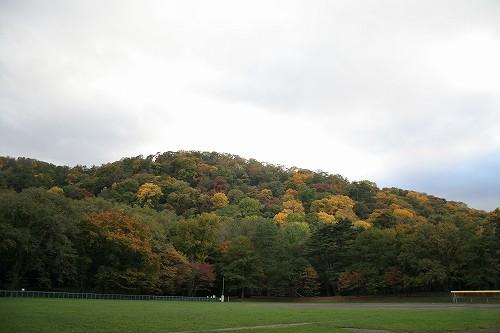 円山の秋_c0048117_1952593.jpg