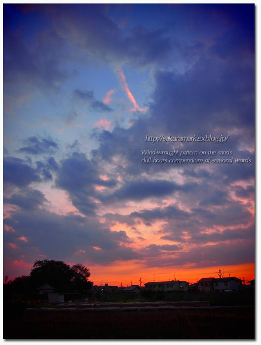 夕方の乱雲。_f0235723_1871745.jpg