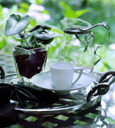Atelier Junkoと植物たち(1)_c0181749_21342026.jpg
