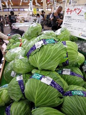 冬野菜ぞくぞくと出荷_c0141652_19522460.jpg