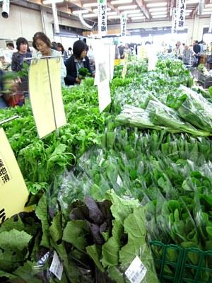 冬野菜ぞくぞくと出荷_c0141652_19523585.jpg