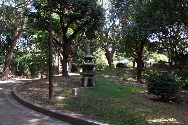 須磨離宮公園01フジバカマとアサギマダラ、薔薇園_a0030958_2258358.jpg