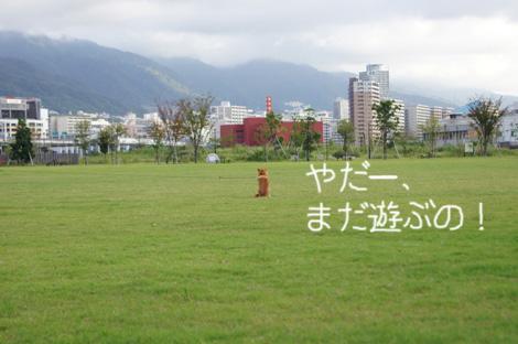 f0196559_19121118.jpg