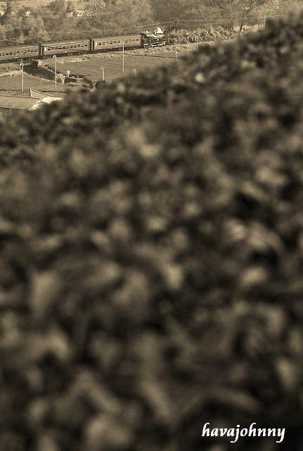 俯瞰より大井川ギラリ名所を撮る_c0173762_23134177.jpg