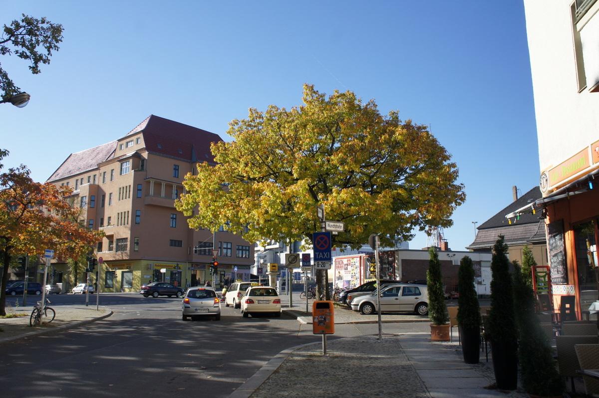 天気晴朗な秋の日曜日に。_c0180686_1602835.jpg