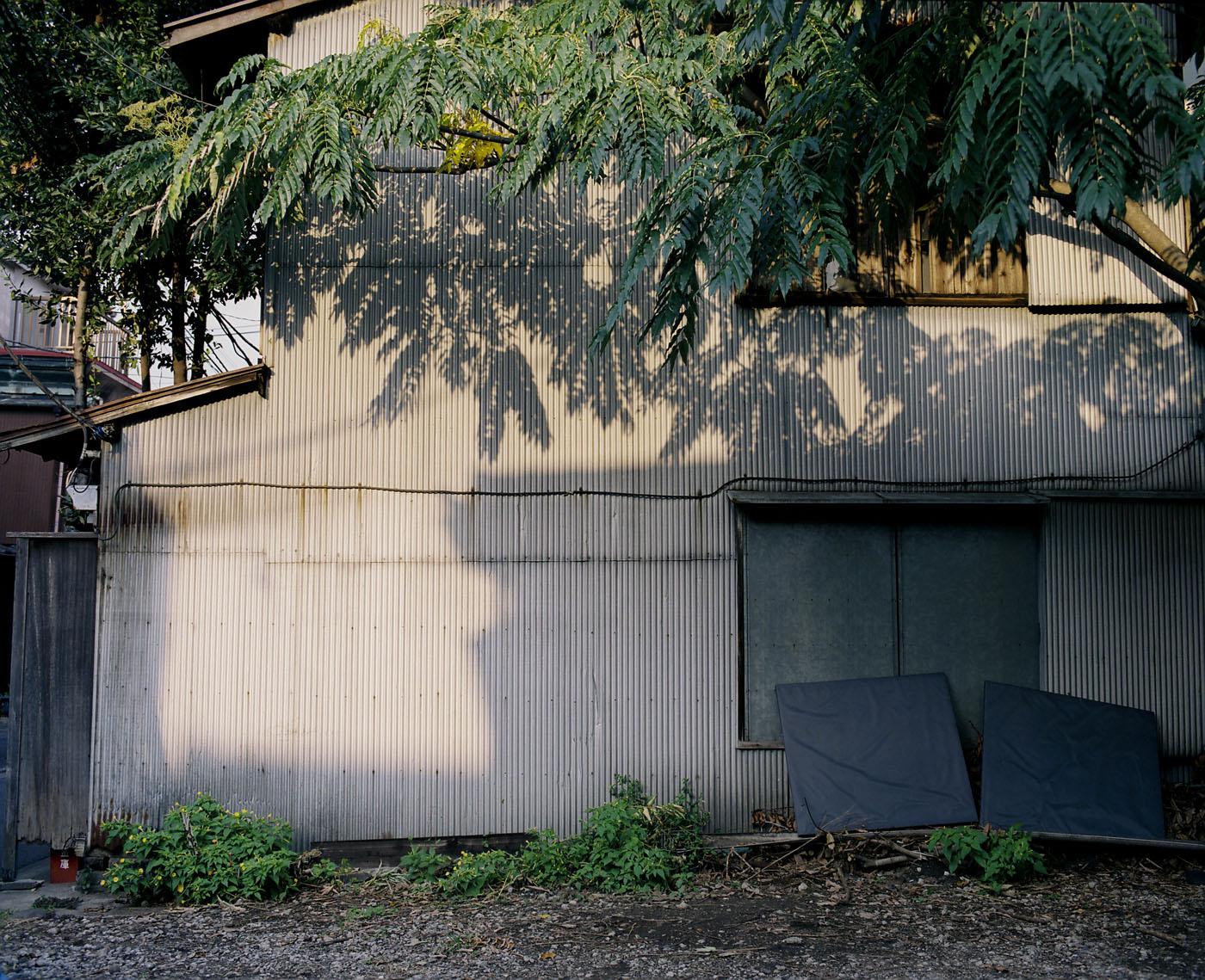 東京観光写真倶楽部、撮影会「根津編」、その3。_c0120903_1284071.jpg