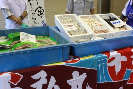 「ふくいの地魚情報館」が福井駅そばにオープン!_f0229508_13452656.jpg