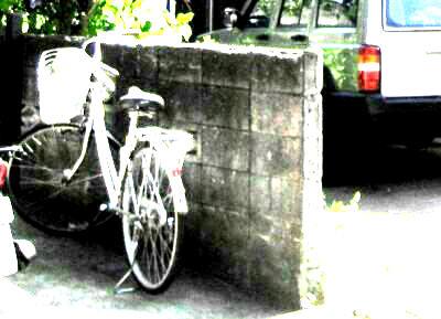ブロック塀もコンクリートに大変身:コンクリート若返り工法の魅力_e0010418_16112381.jpg