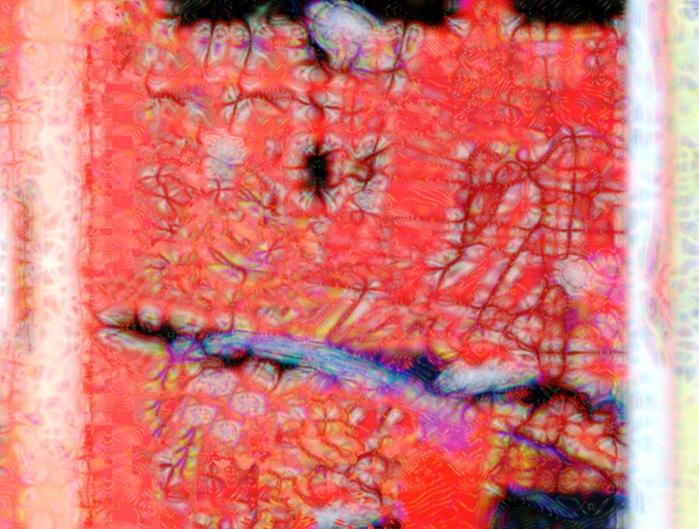 「物体としての/物質としての/写真」_e0232531_13541374.jpg