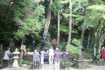 菩提樹の実_a0220570_10573841.jpg
