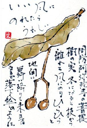 菩提樹の実_a0220570_1163426.jpg