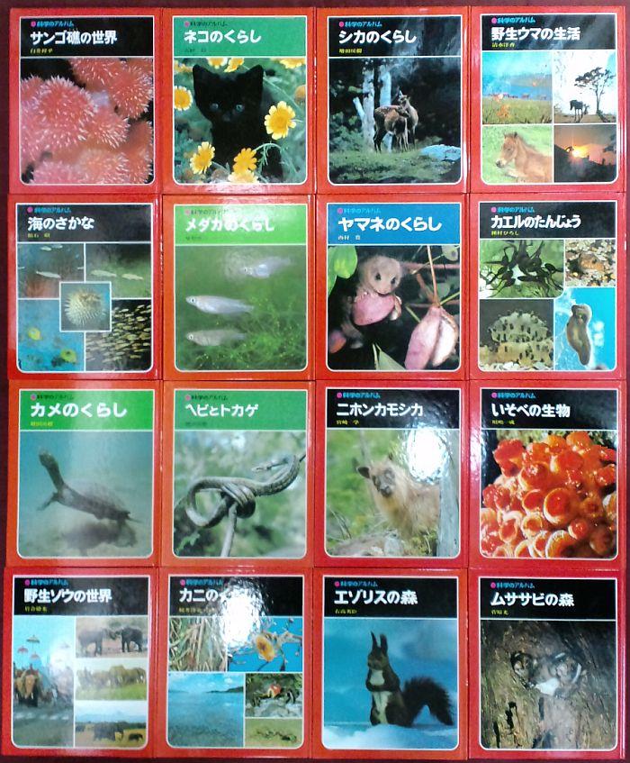 2011/10/19       せと_f0035084_21411084.jpg