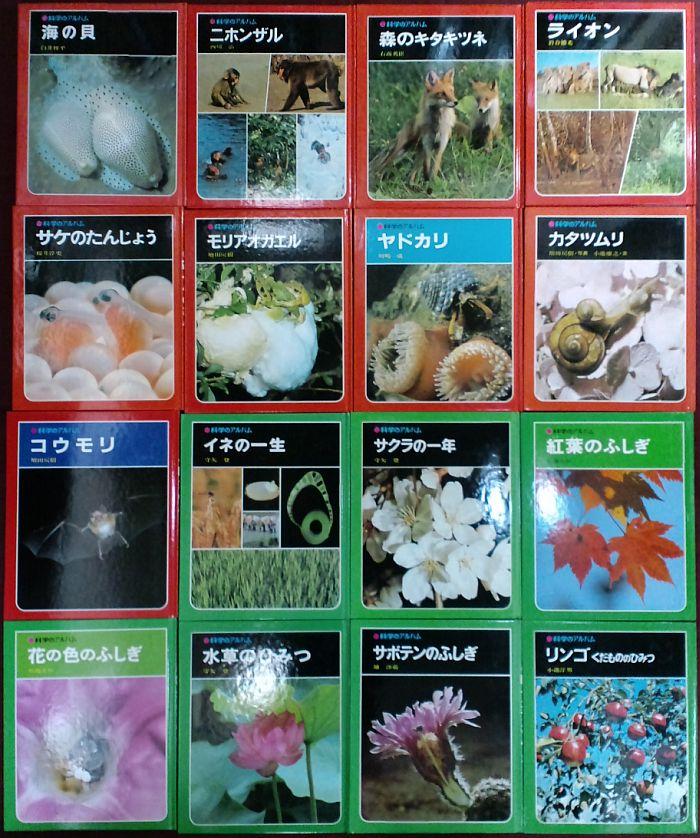 2011/10/19       せと_f0035084_21411867.jpg