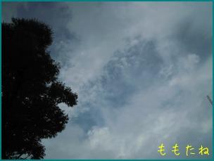d0044986_22313891.jpg