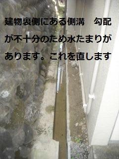 f0031037_1954637.jpg