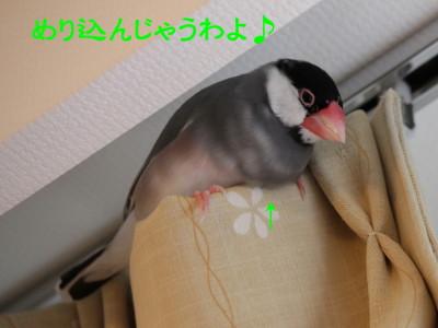 b0158061_2234146.jpg