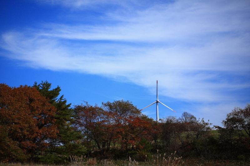 風車_e0183063_759559.jpg