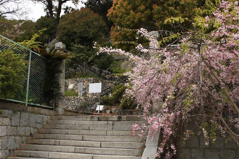舞台探訪:たまゆら【大崎下島】_d0217090_19382364.jpg