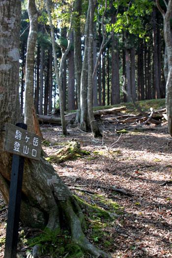 若狭駒ケ岳へ 1_e0048413_2355726.jpg