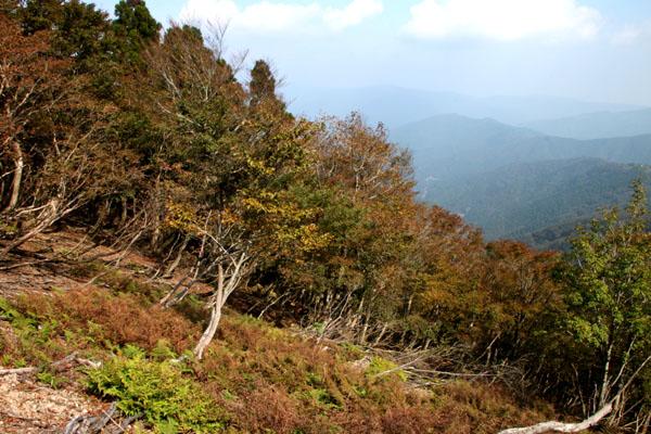 若狭駒ケ岳へ 1_e0048413_2371386.jpg