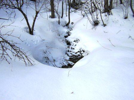 「龍泉洞の水」水源を辿る_b0206037_169584.jpg