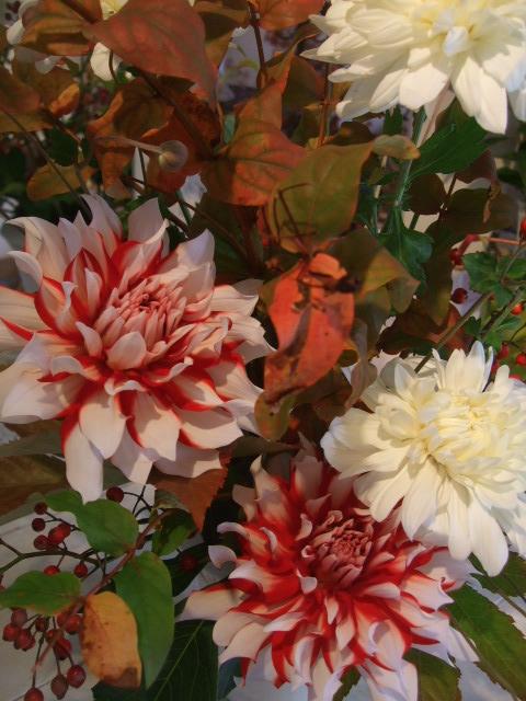 オークリーフ花の教室(北条さんの作品)_f0049672_16313953.jpg