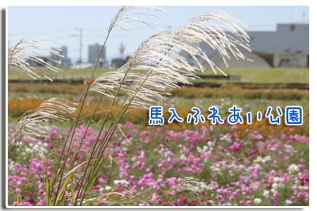 b0024183_20123333.jpg