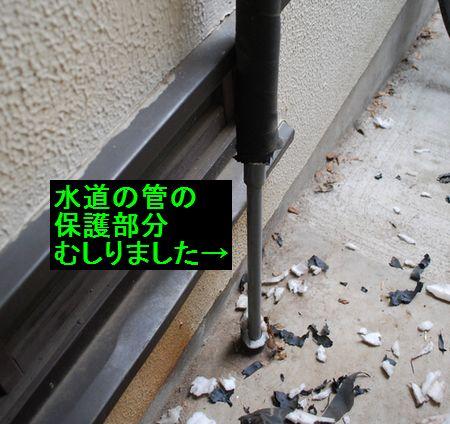 f0109202_2317675.jpg