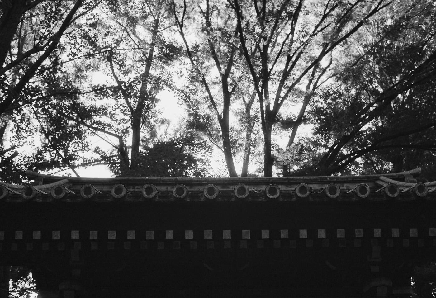 根津神社。_c0120903_1322473.jpg