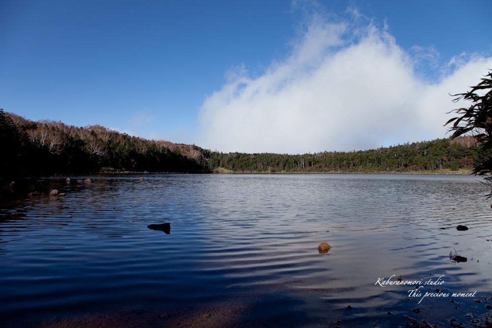 北八ヶ岳雨池へミニトレッキング_c0137403_16343798.jpg