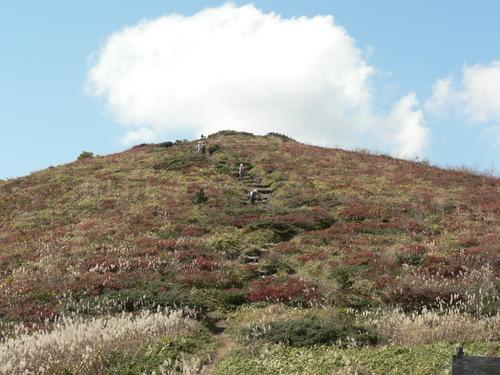 比婆山 ~縦走~_f0219710_8384555.jpg