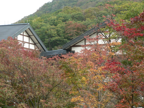 比婆山 ~縦走~_f0219710_9291443.jpg