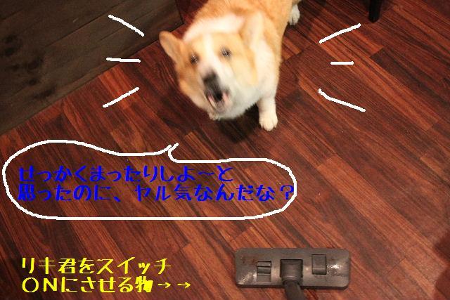 b0130018_22345611.jpg