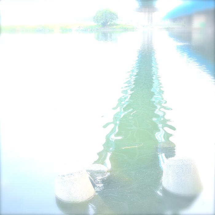 d0204134_310557.jpg