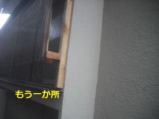 f0031037_19431568.jpg