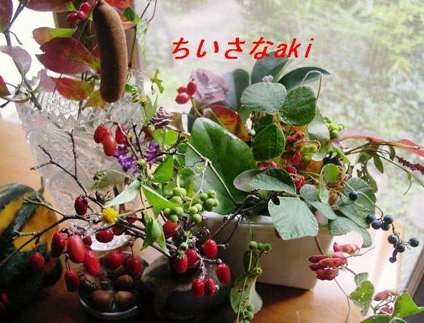f0179357_2247278.jpg