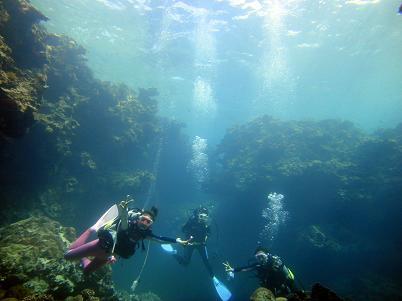 沖縄北部でダイビングを満喫♪_a0156273_18322666.jpg