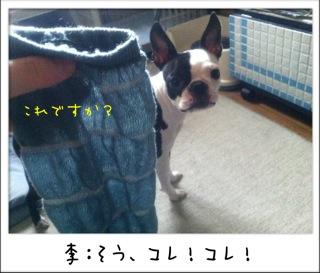 f0168374_17493280.jpg