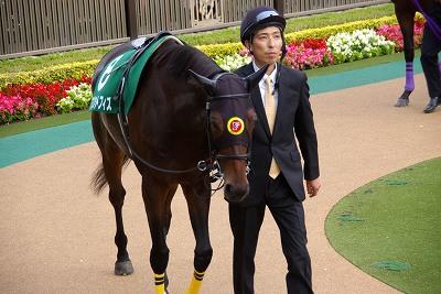 富士Sはエイシンアポロンが、1年11ヶ月振りの重賞2勝目を飾る_b0015386_226593.jpg