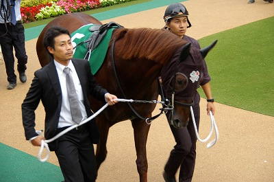 富士Sはエイシンアポロンが、1年11ヶ月振りの重賞2勝目を飾る_b0015386_2272618.jpg