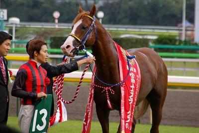 富士Sはエイシンアポロンが、1年11ヶ月振りの重賞2勝目を飾る_b0015386_228124.jpg
