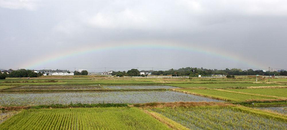 Over the rainbow_b0114798_17113394.jpg