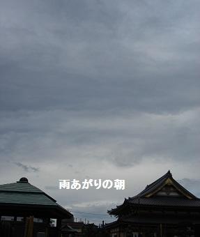 b0226221_12385929.jpg