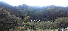 矢筈山(756m 津山市)_b0156456_18291128.jpg