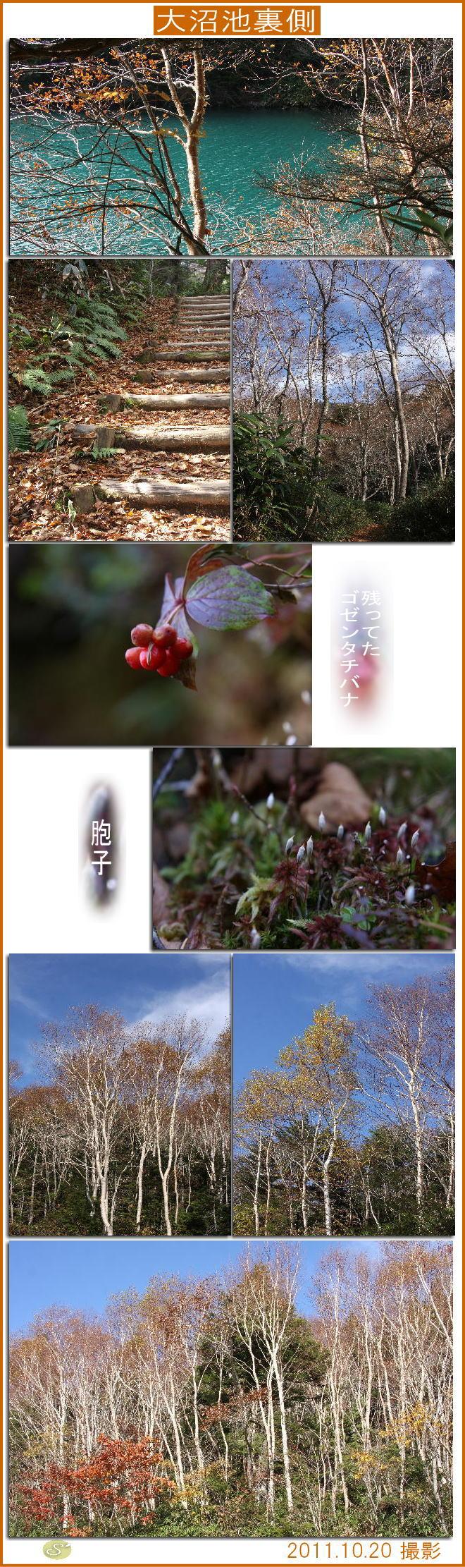 f0164592_736917.jpg
