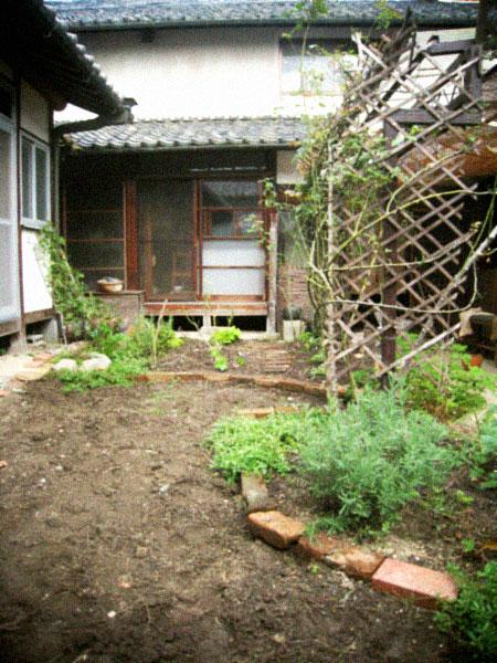 秋の庭仕事、あれやこれや…。_d0077603_12485324.jpg
